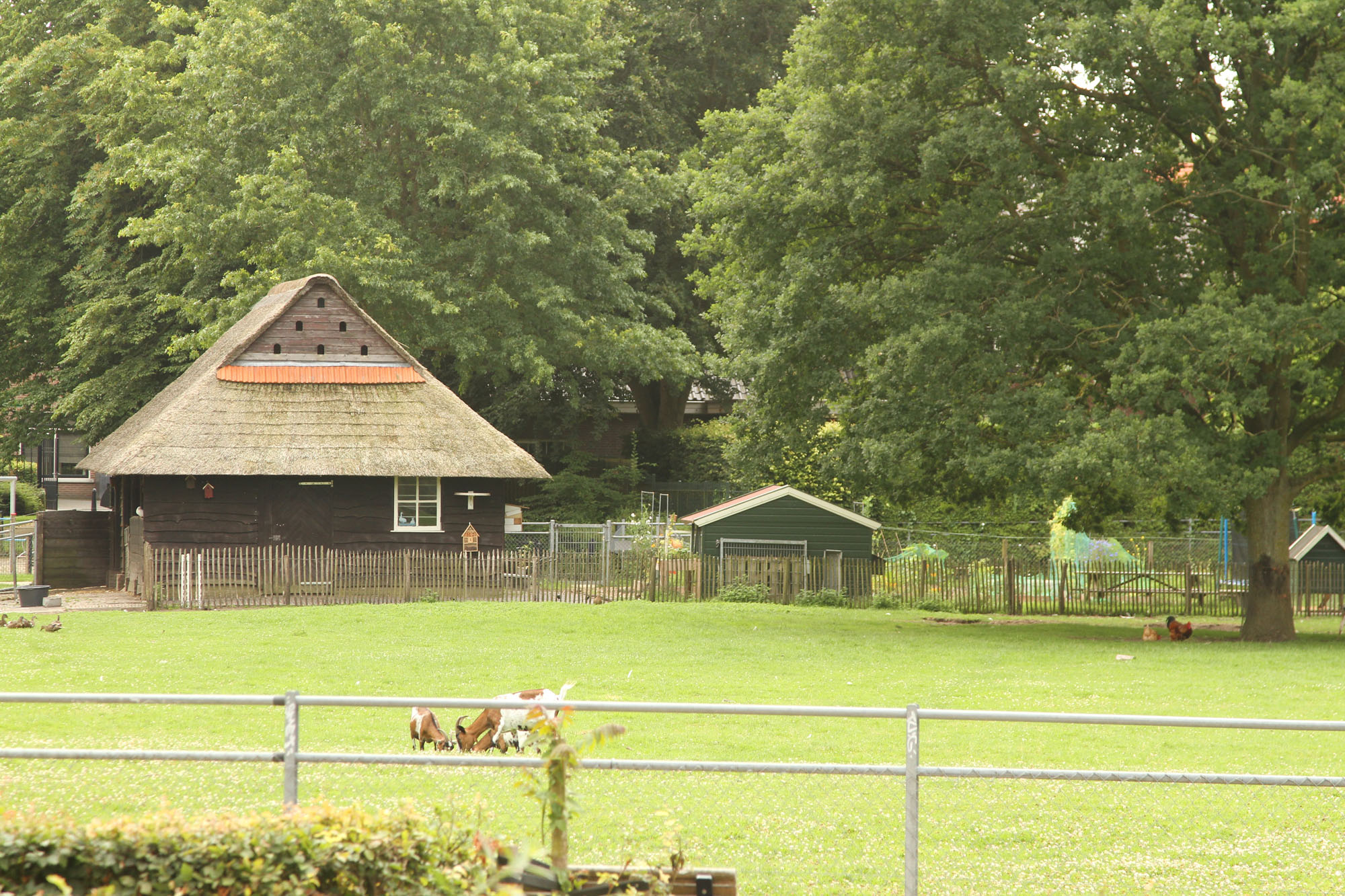 kinderboerderij-park-eekhout-zwolle